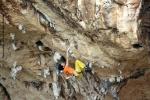 arrampicata-a-parco-cerriolo-custonaciE1543E88-BA29-1056-A2A6-290C29B4CB1F.jpg